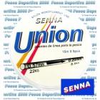 Puente de linea Senna Union
